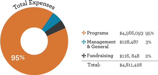 Infographic depicting SOS Outreach's Financial Chart